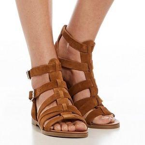 Steve Madden Delmar Gladiator Sandals